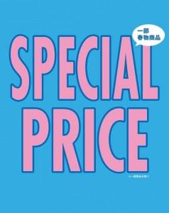 SPRING SPECIAL PRICE
