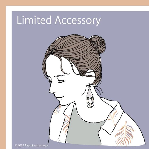 LimitedAccessory4.19